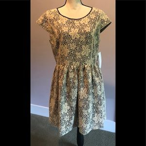 Kensie dress NWT